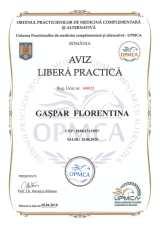 aviz de libera practica-1